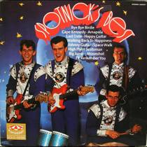 Picture of a band or musician: The Spotnicks
