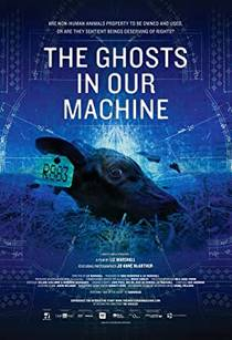 Picture of a movie: The Ghosts In Our Machine