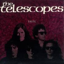 Picture of a band or musician: The Telescopes