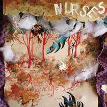 Picture of a band or musician: Nurses