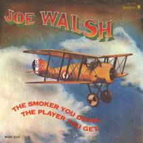 Picture of a band or musician: Joe Walsh