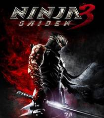 Picture of a game: Ninja Gaiden 3