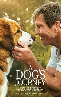 Picture of a movie: A Dog's Journey