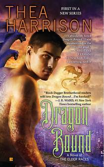 Picture of a book: Dragon Bound