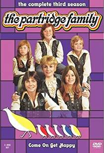 Picture of a TV show: The Partridge Family