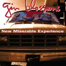 Picture of a band or musician: Gin Blossoms