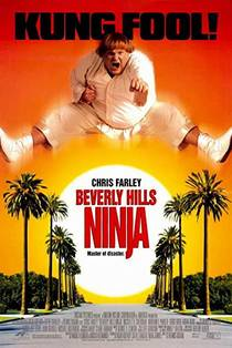 Picture of a movie: Beverly Hills Ninja