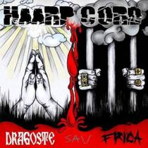 Picture of a band or musician: Haarp Cord