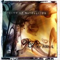 Picture of a band or musician: City Of Satellites