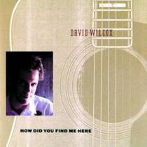 Picture of a band or musician: David Wilcox
