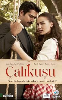 Picture of a TV show: Çalikusu