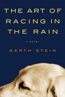 Picture of a book: The Art Of Racing In The Rain