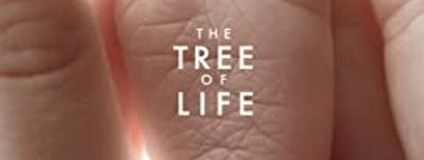Image of The Tree Of Life