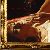 Picture of a band or musician: Team Sleep