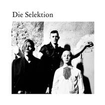 Picture of a band or musician: Die Selektion