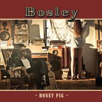 Picture of a band or musician: Bosley