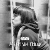 Picture of a band or musician: Rozi Plain