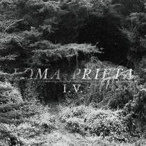 Picture of a band or musician: Loma Prieta