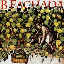 Picture of a band or musician: B Fachada