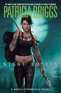 Picture of a book: Night Broken