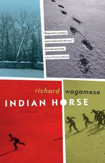 Picture of a book: Indian Horse