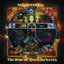 Picture of a band or musician: Badly Drawn Boy