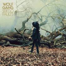 Picture of a band or musician: Wolf Gang