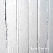 Picture of a band or musician: Beach Fossils
