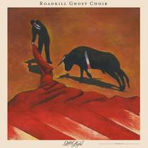 Picture of a band or musician: Roadkill Ghost Choir