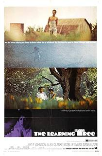 Picture of a movie: The Learning Tree