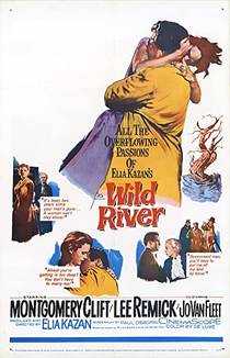 Picture of a movie: Wild River