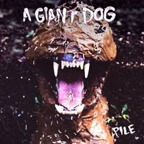 Picture of a band or musician: A Giant Dog