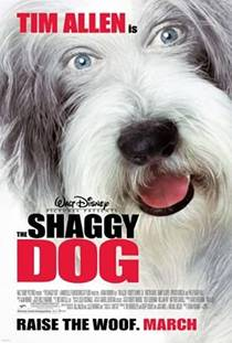 Picture of a movie: The Shaggy Dog