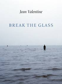 Picture of a book: Break the Glass