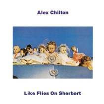 Picture of a band or musician: Alex Chilton