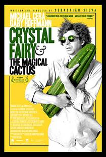 Picture of a movie: Crystal Fairy