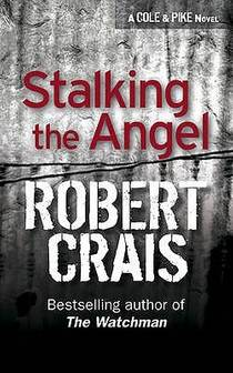 Picture of a book: Stalking the Angel