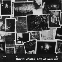 Picture of a band or musician: Gavin James