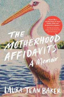 Picture of a book: The Motherhood Affidavits: A Memoir