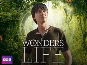 Picture of a TV show: Wonders Of Life