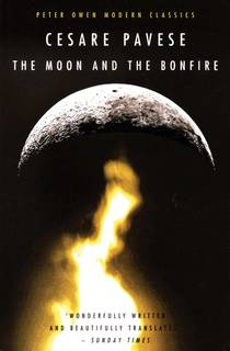 Picture of a book: The Moon and the Bonfire