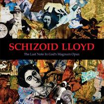 Picture of a band or musician: Schizoid Lloyd