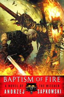 Picture of a book: Baptism Of Fire