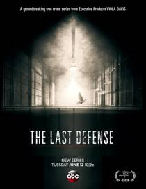 Picture of a TV show: The Last Defense