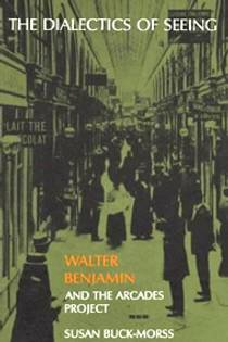 Picture of a book: The Dialectics of Seeing: Walter Benjamin and the Arcades Project