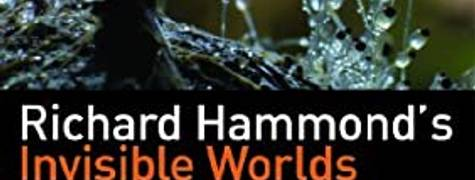 Image of Richard Hammond's Invisible Worlds