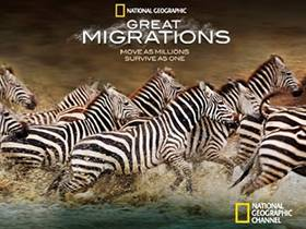 Picture of a TV show: Great Migrations