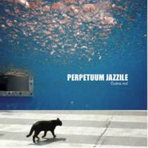 Picture of a band or musician: Perpetuum Jazzile