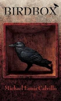 Picture of a book: Birdbox