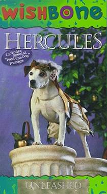 Picture of a TV show: Wishbone